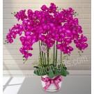 Artificial Phalaenopsis Arrangement