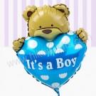 Boy Little Bear
