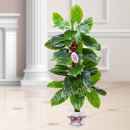 Aureum Tree Artificial Plant